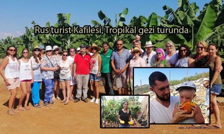 Rus turist Kafilesi, Tropikal meyve mango gezi turunda